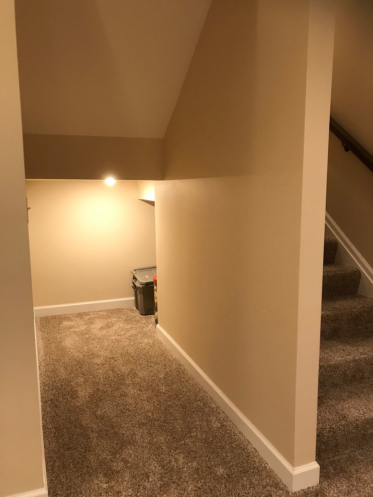 Finished Basement with Storage Area under stairs