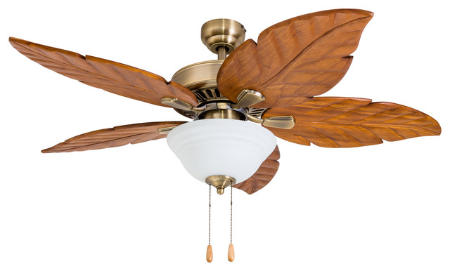 Tropical Ceiling Fans With Light Bindu Bhatia Astrology