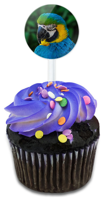 Colorful Parrot Cupcake Toppers Picks Set.