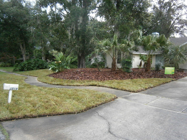 Orlando fl sod replacement front yard traditional for Landscape design orlando