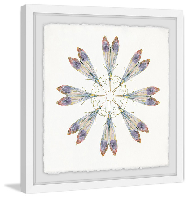Quot Purple Wing Dance Quot Framed Painting Print Contemporary