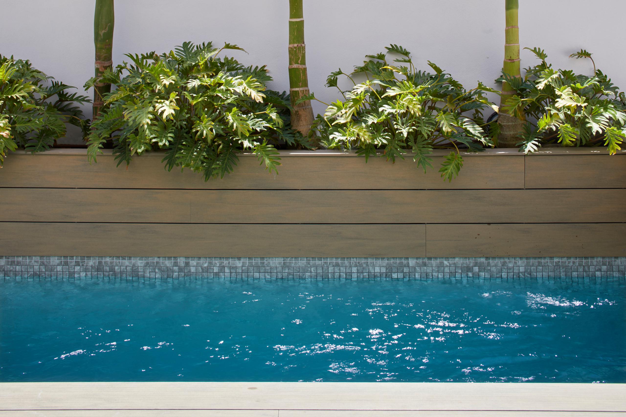 Detalle de la piscina con jardinera incorporada