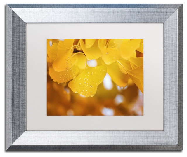 11 by 14-Inch White Matte/Black Frame Trademark Fine Art Nature Time Machine Framed Artwork by Philippe Sainte-Laudy