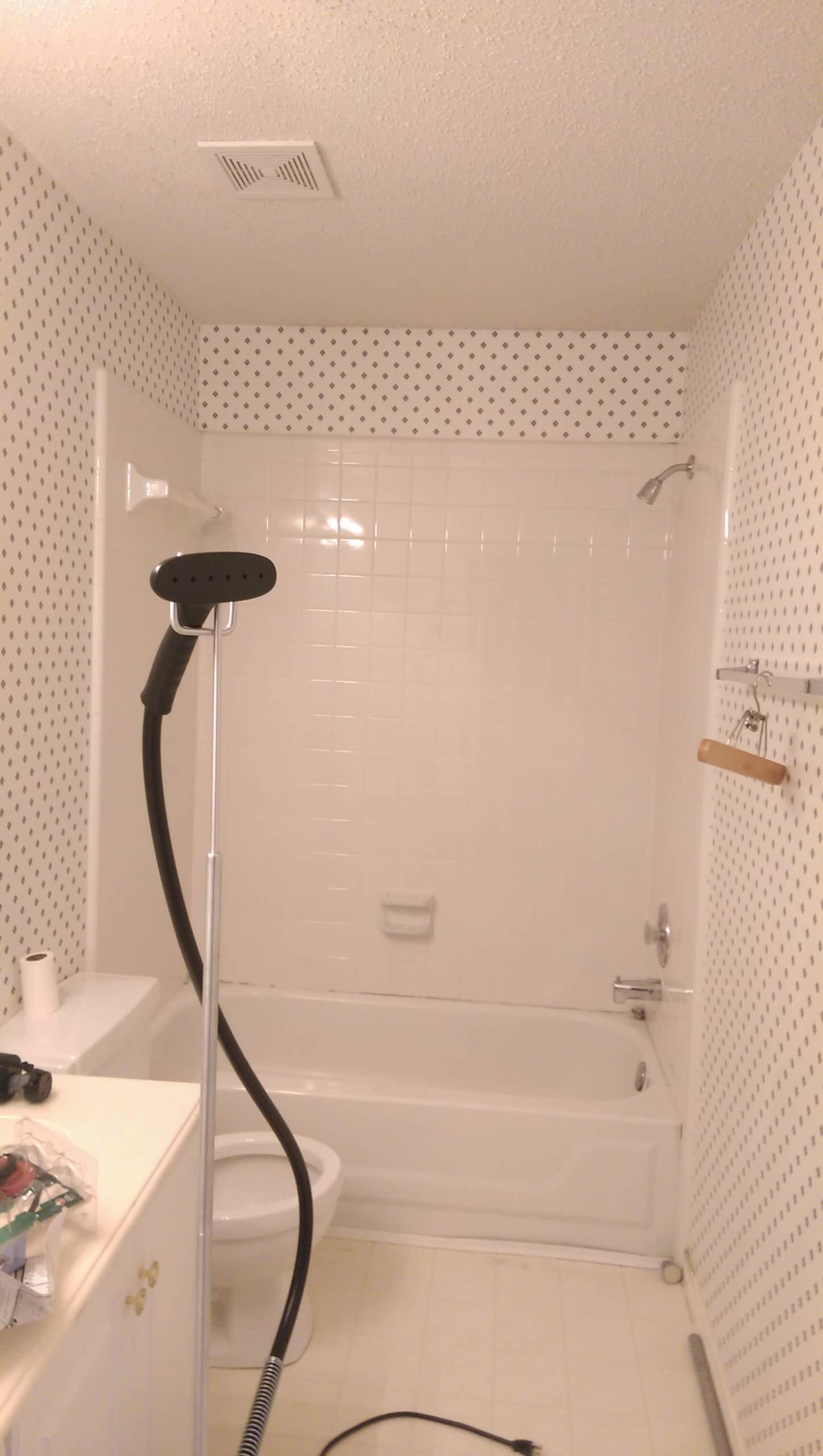 Hall Bathroom Update
