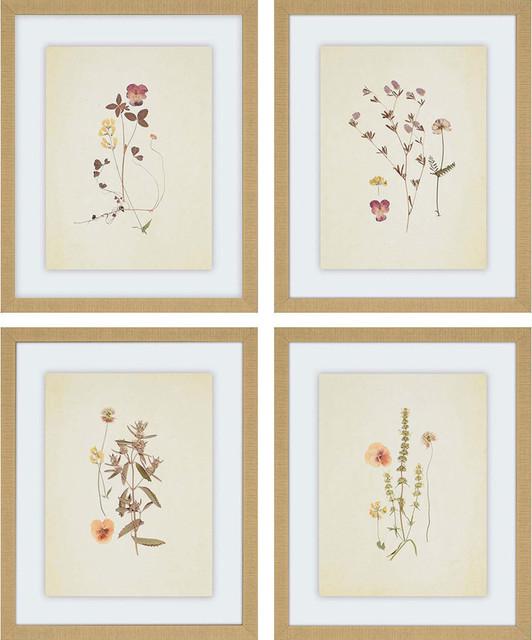 Herbarium, 4 Panels.