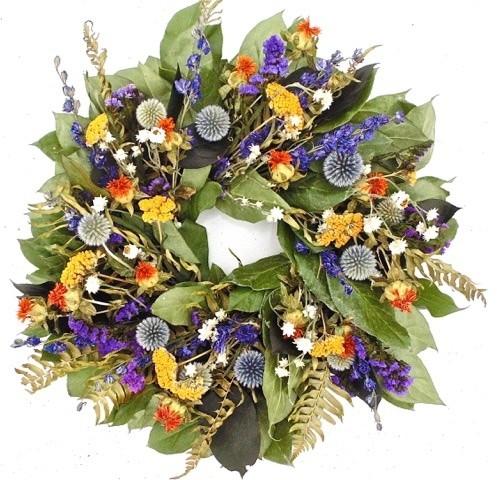 Echinops Wreath, Small