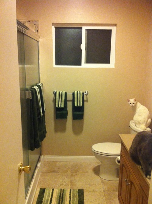 Need curtain for a very small Bathroom window.