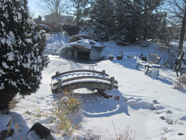 Winter water features denver by rocky mountain waterscape for Koi pond in winter