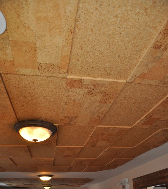 Jelinek Cork Walls Amp Ceilings Contemporary Toronto