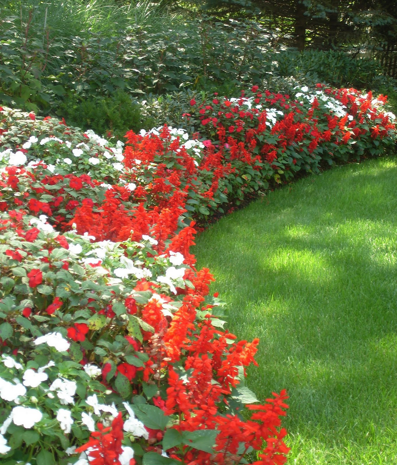 Flower Beds and Borders