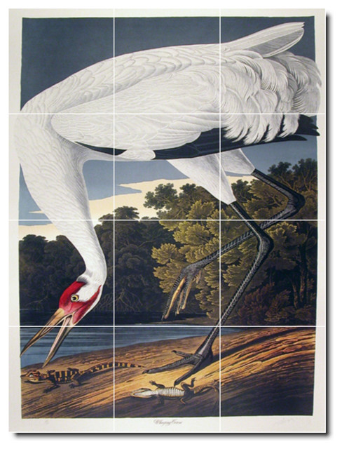 John audubon birds painting ceramic tile mural 44 for Ceramic mural painting