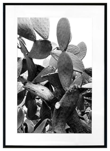 """black And White Cactus"" Framed Photo Print, 28""x20""."