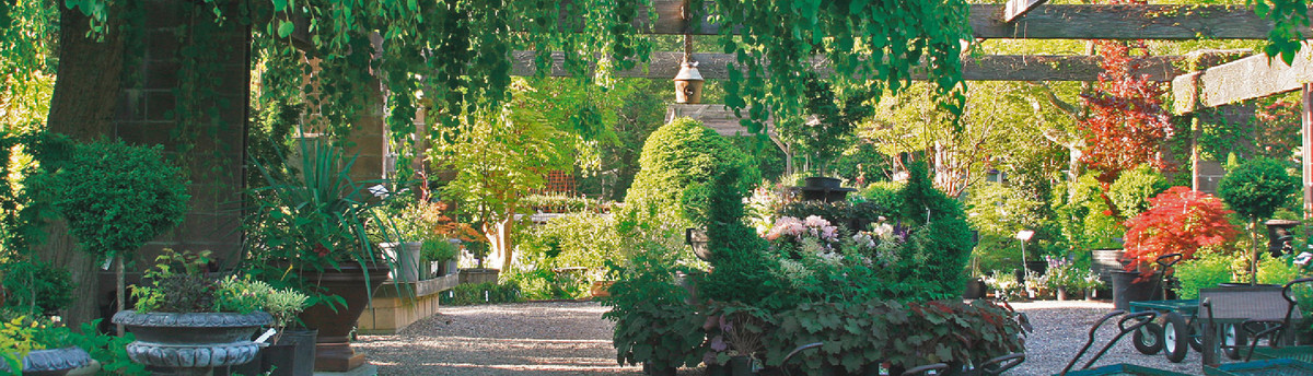 Oliver Nurseries