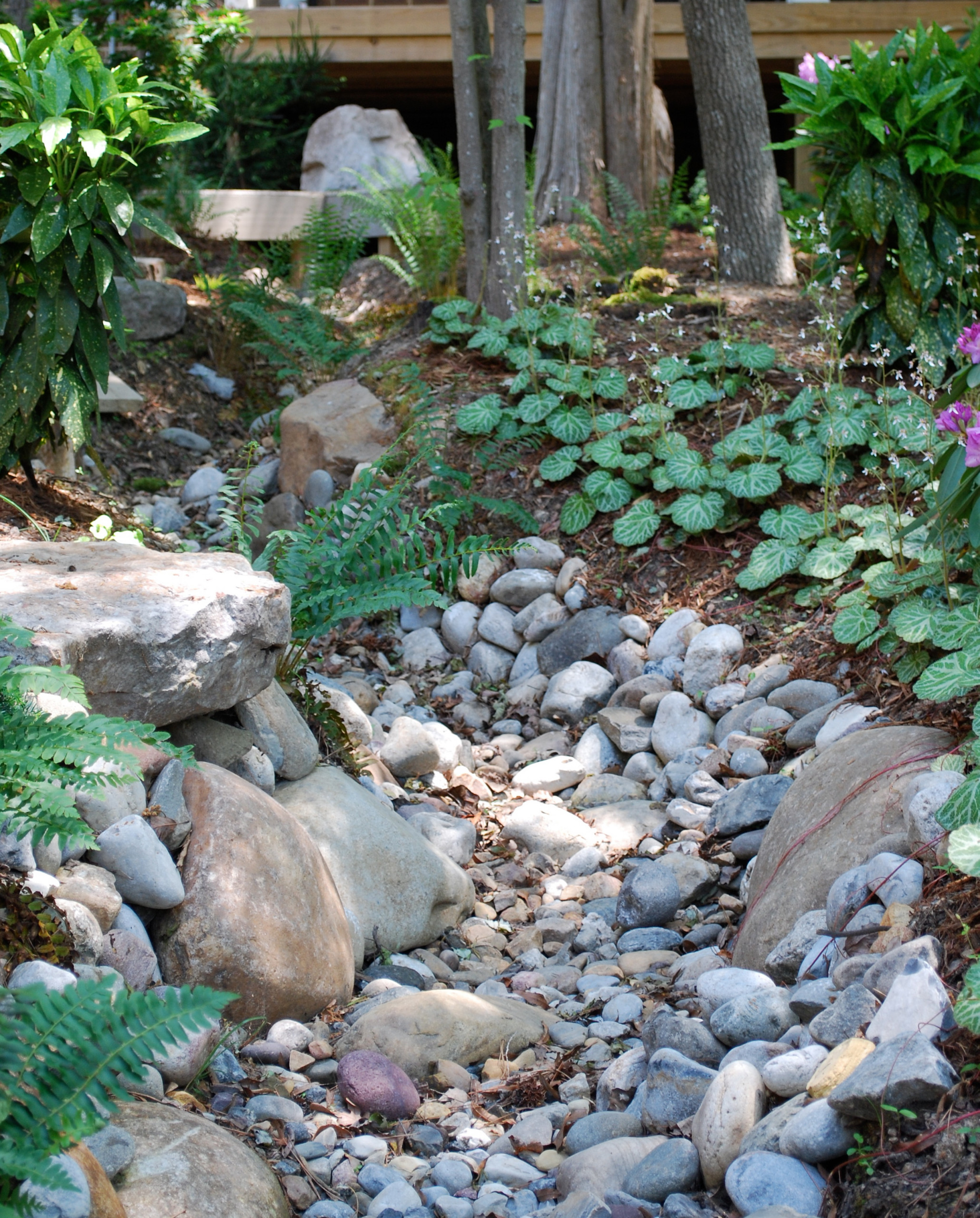 Asian-inspired woodland creek bed