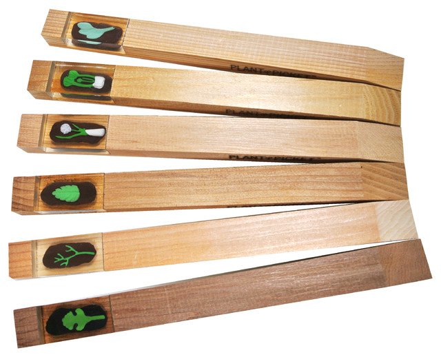 Plant Picket - Italian Herb Garden Markers, Set of 3 - View in Your Room! | Houzz