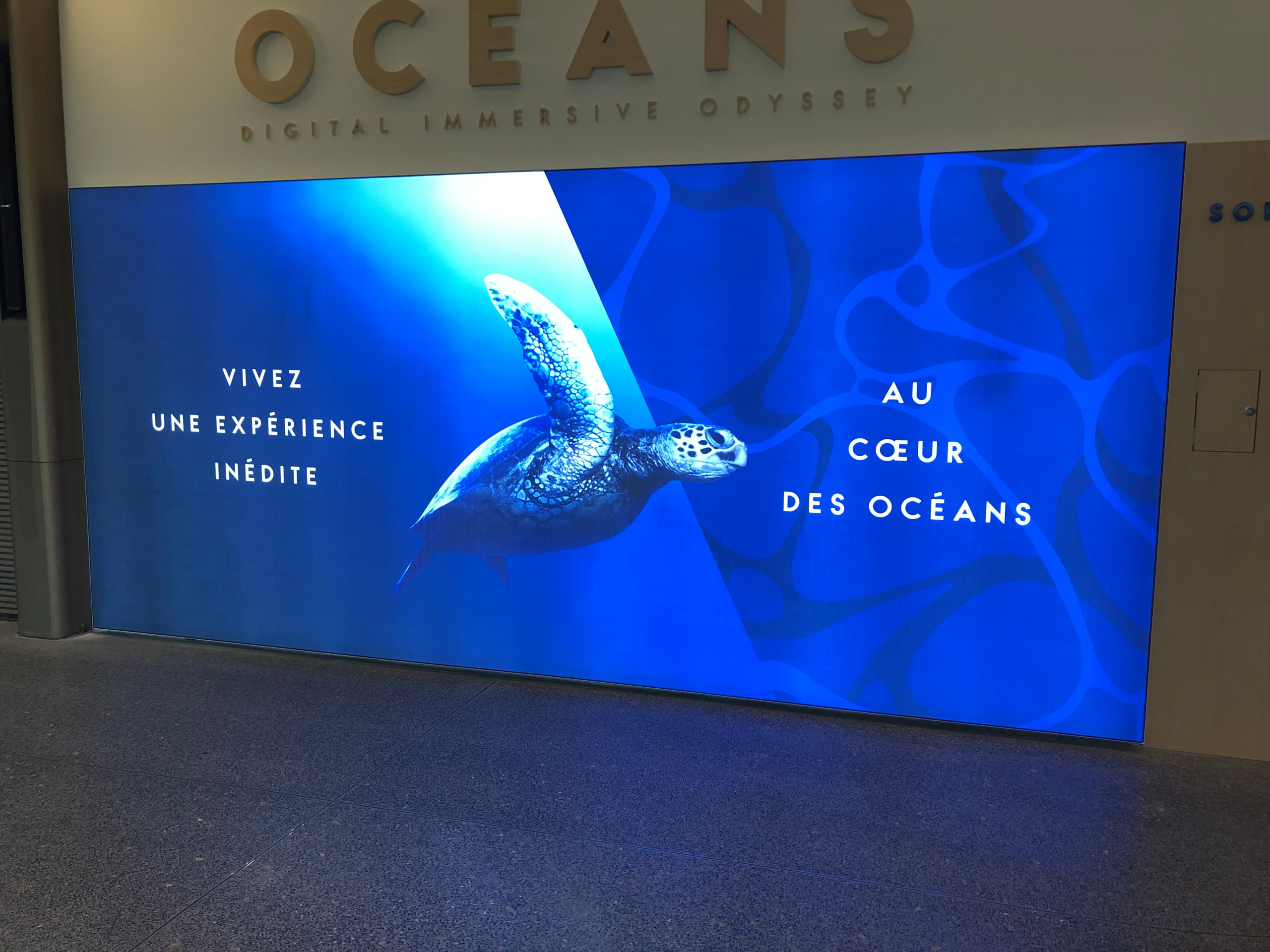 Aquarium virtuel intéractif
