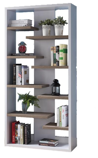 Contemporary Bookcase Display Shelf