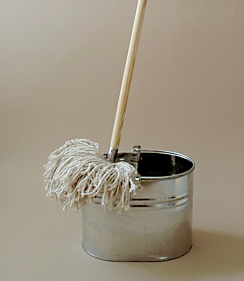 Mop and bucket rustic-mops-brooms-and-dustpans