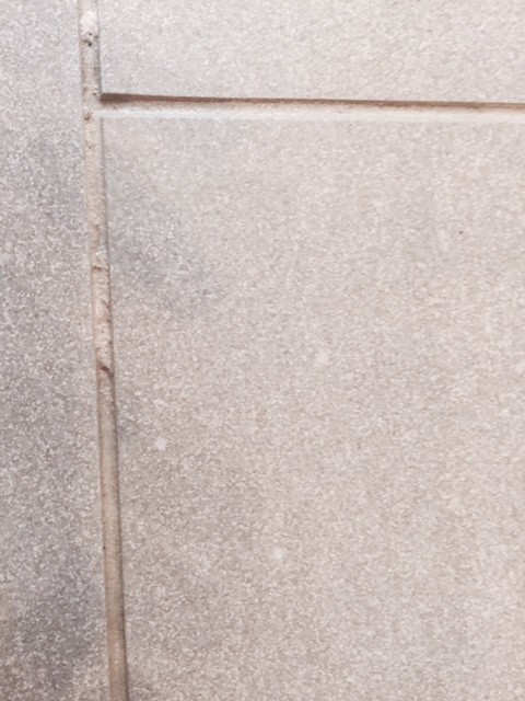 What To Do About Minor Porcelain Tile Sealing Disaster