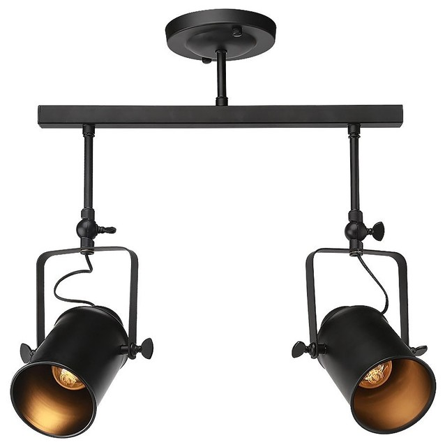 Adjule 2 Light Track Lighting Semi Flush Mount Ceiling Black