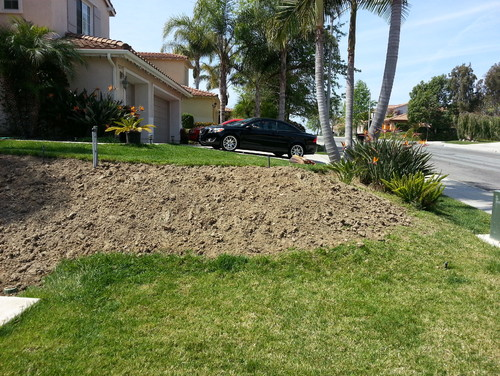 Need Help Landscaping Small Slope In Front Yard