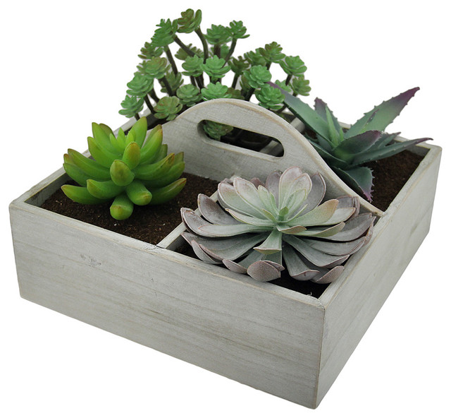 Artificial Succulent Plant Garden, Wooden Box Transitional Artificial Plants  And Trees
