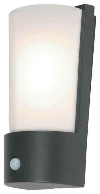 Azure Wall Lantern