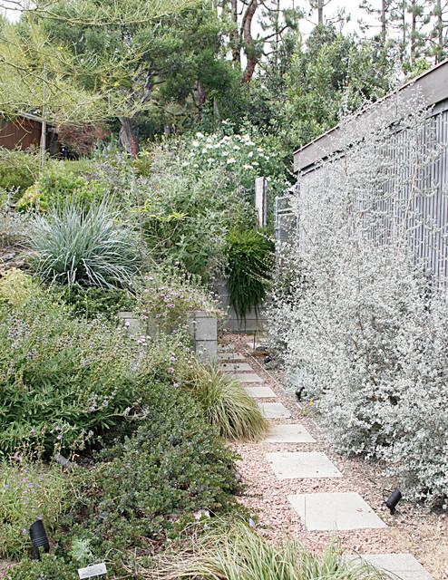 Stroll Through 10 Inspiring California Native Gardens