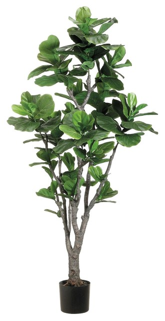 6' Fiddle Leaf Fig Tree With PU Trunk in Plastic Pot Green