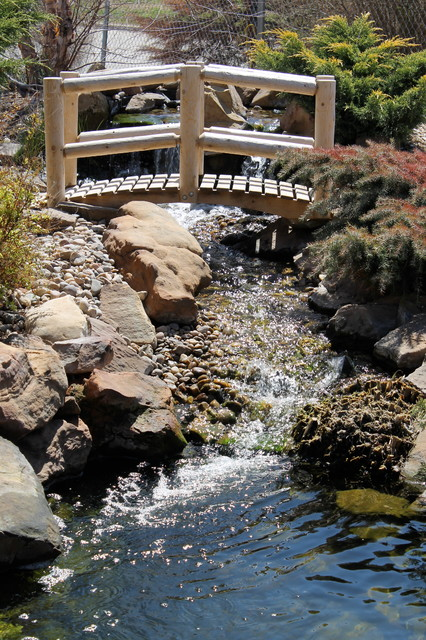 Small water features modern garden oklahoma city for Garden pond unlimited