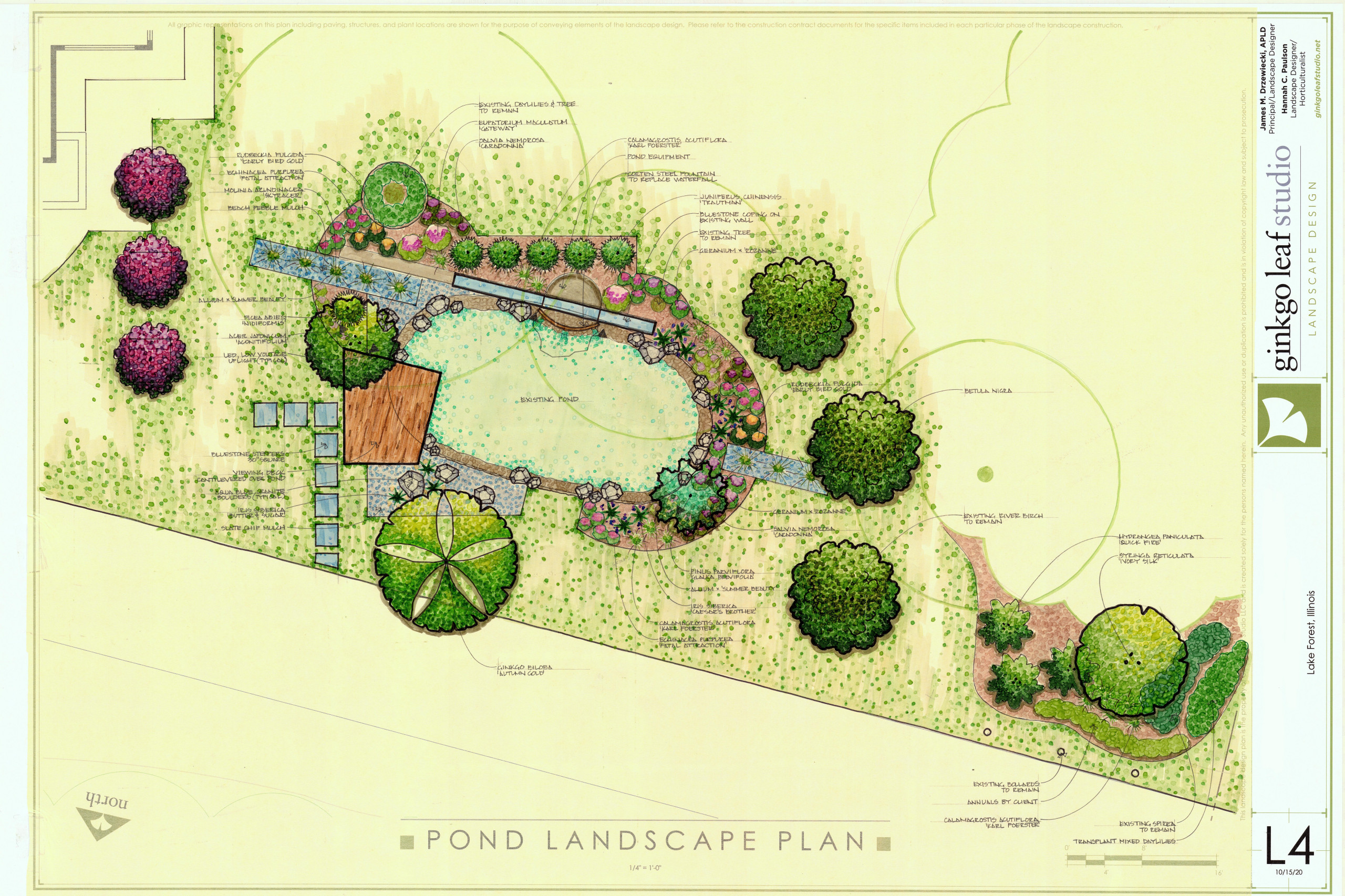 Contemporary Pond Renovation - Lake Forest