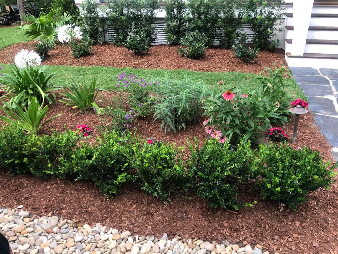 Beautiful Entryway Perennial Garden