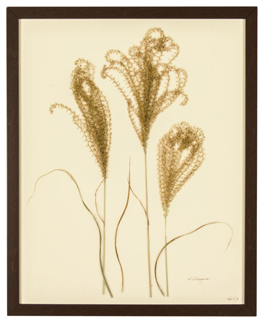 French Country Wildgrass Print Botanical Framed Wall Art, II ...