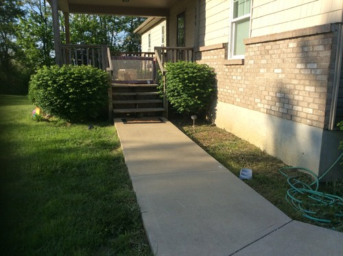Help Need Landscaping Ideas