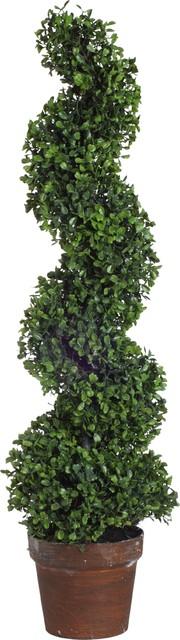 "Boxwood Tree, 36"""