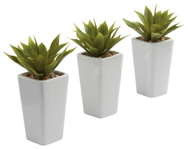Mini Agave Plants, Set of 3, White contemporary-artificial-plants-and