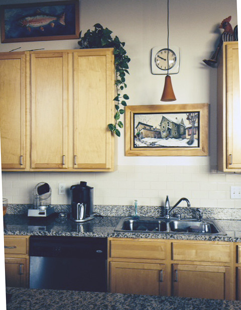 Should I paint my ugly kitchen cabinets?