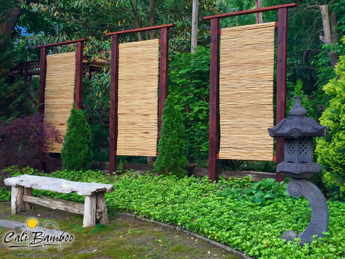 Cali Bamboo Fencing 6ft X 8ft Natural 2 Inch Diameter