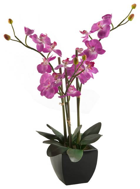 D&W Silks Purple Phael Orchids in Black Ceramic Planter traditional-artificial-flower-arrangements
