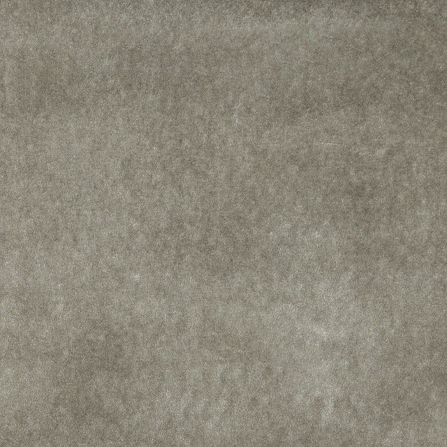 Shop Houzz Palazzo Fabrics Light Grey Solid Plain Velvet