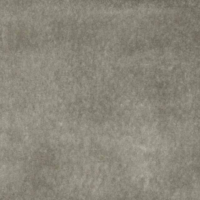 Light Grey Solid Plain Velvet