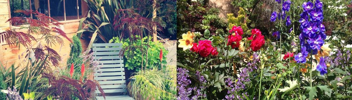 Garden Design Nursery madeline george garden design nursery - boise, id, us 83714