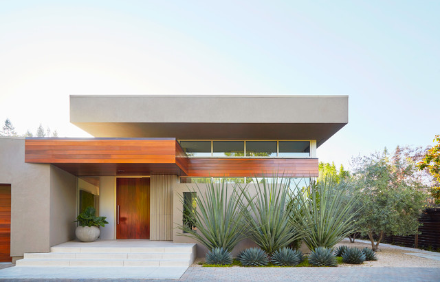 6 Bold and Beautiful Design Strategies for Low-Water Landscapes