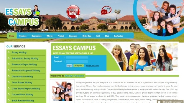 Best essay writing service reviews