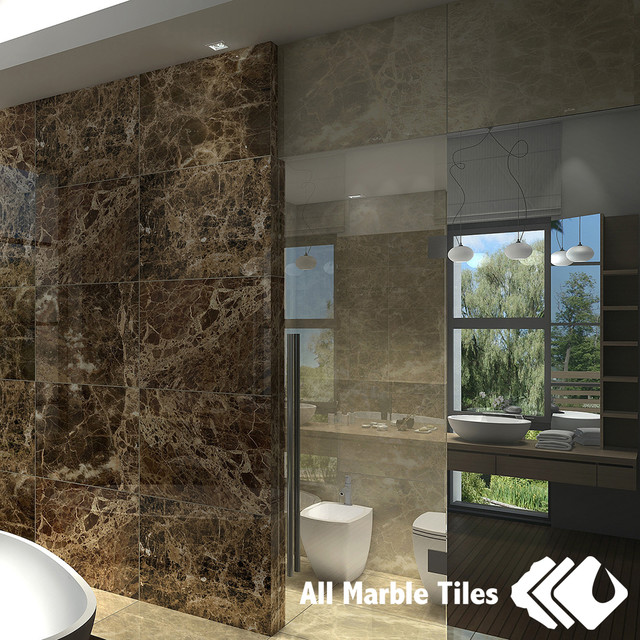 Light Colored Granite For Bathroom: Bathroom Design With Dark Emperor And Light Emperador Tile