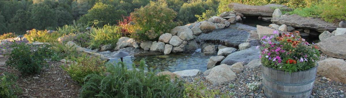 Legacy Landscape Walnut Creek Ca Us 94596