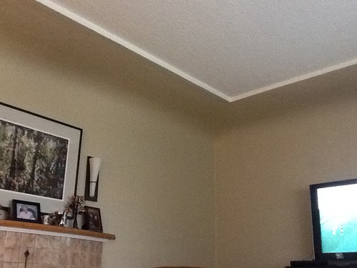 Coved ceilings with inset -paint ideas???