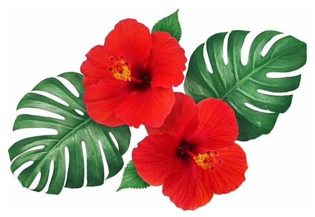 Red Tropical Hibiscus Flowers Wall Decal By Wallmonkeys Tropical