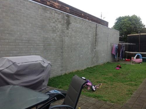 Diy Ideas for ugly backyard brick wall on Backyard Brick Wall Ideas id=89330