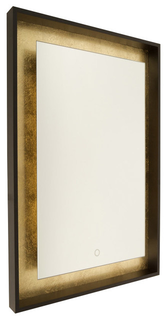 Light Wall Mirror In Oil Rubbed Bronze